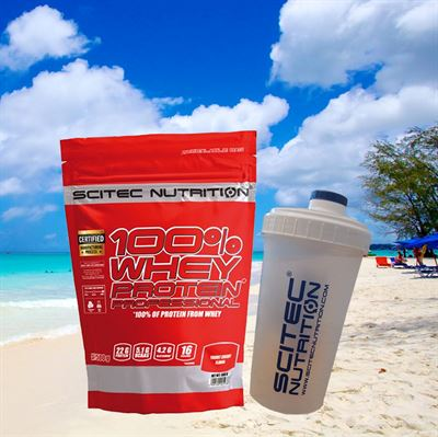 Image of   SCITEC WHEY PROTEIN PROFESSIONAL 500g + SHAKER
